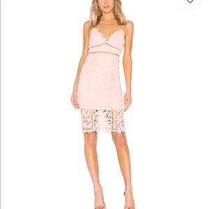 NWT Bardot Botanica Lace Dress